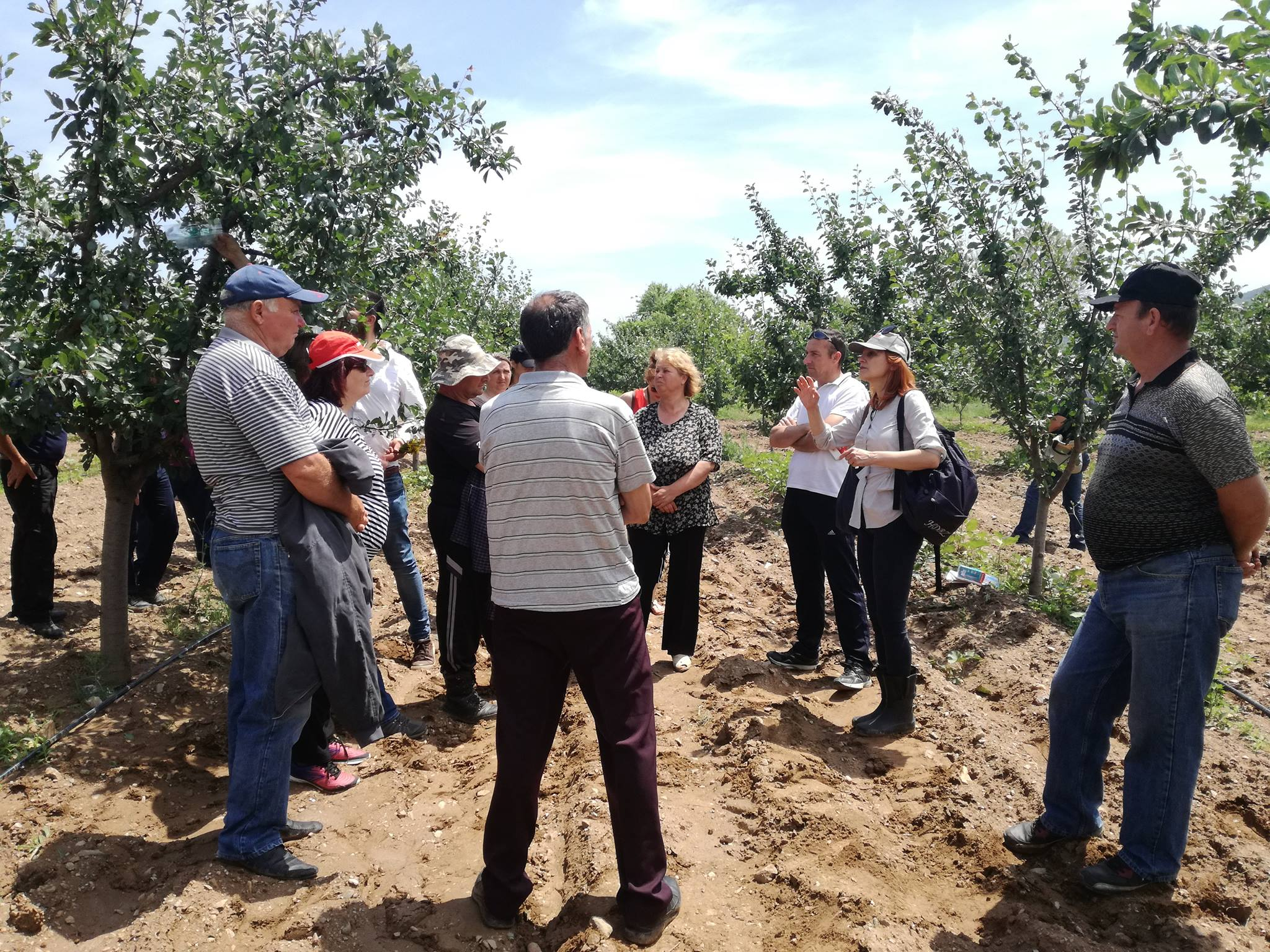 Technical support for the introduction of sustainable farming practices for the river Strumica