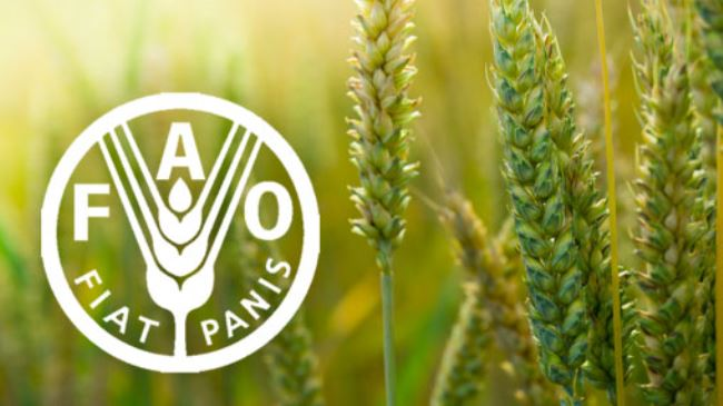 FAO Regional Technical Cooperation Program of Empowerment of smallholders and family farms