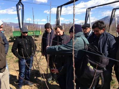 Support to the Introduction of Sustainable Farming practices in the Prespa Lake Watershed Restoratio